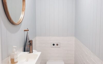3 Warnings When Using Drano For Toilets