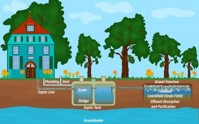 The comprehensive guide to understand Septic tank leach lines