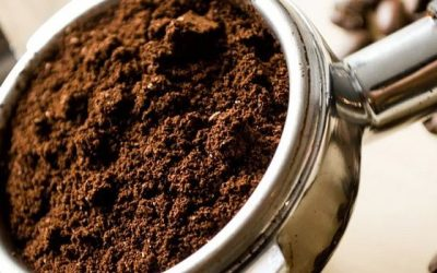 What happens if you put coffee grounds down the sink?